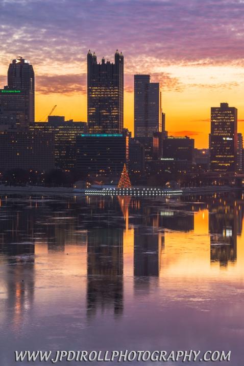 Tree Pittsburgh Reflection Sunrise Morning Blog
