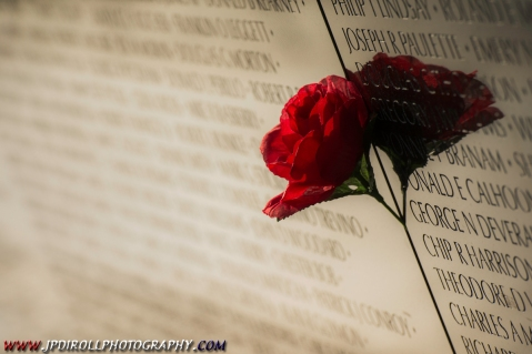 Backlit Rose Vientam Wall Memorial DC Washington BLOG