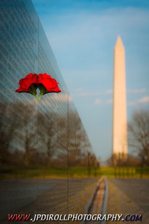 Rose in Wall Vietnam Memorial Washington DC BLOG