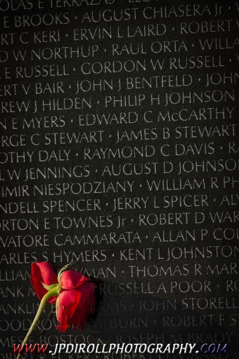 Weeping Rose Vientam Wall Memorial DC Washington BLOG