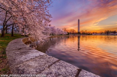 "9. I've always wanted to photograph the Cherry Blossom Festival in Washington, D.C. and this year I had the chance.  ""Pretty in Pink"" represents the last morning where the light and conditions combined for a perfect sunrise!"