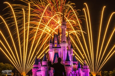 Walt's Wish Wishes Disney World Magic Kingdom Firewors c web srgb